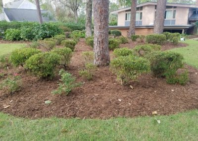 Flower Bed Project