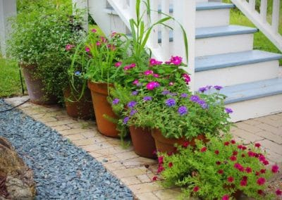 Flower Pots by Stairs
