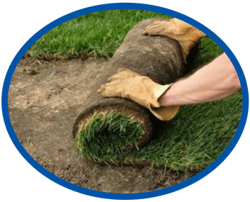 Sod Installation Wilmington